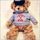 sample_teddy_bear01.jpg